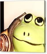 Snail Looking At Frog Canvas Print