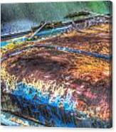 Snail Tracks On Antique Truck Hood Canvas Print