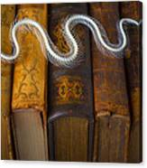 Snake And Antique Books Canvas Print