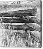 Snake Fence  Canvas Print