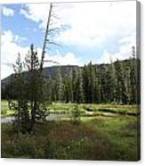 Snake River Meadow Canvas Print