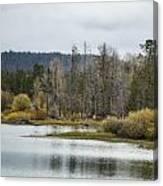 Snake River Near Cattleman's Bridge Site -  Grand Tetons Canvas Print
