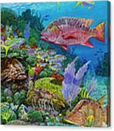 Snapper Reef Re0028 Canvas Print