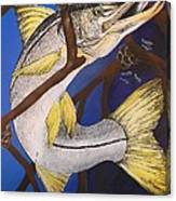 Snook Painting Canvas Print