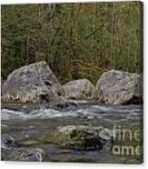 Snoqualmie River Canvas Print