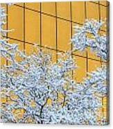 Snow And Golden Glass Canvas Print