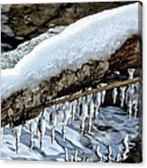 Snow And Icicles No. 1 Canvas Print