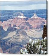 Snow At The Grand Canyon Canvas Print