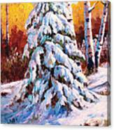 Snow Blanket Canvas Print