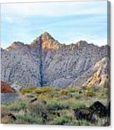 Snow Canyon Canvas Print