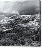 Snow Capped 45 Canvas Print
