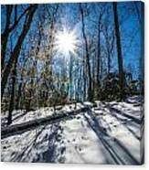 Snow Covered Forest Canvas Print