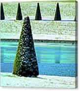 Snow Covered Garden Canvas Print
