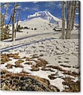 Snow Covered Mount Hood In Oregon Canvas Print