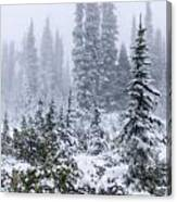 Snow Covered Mountain Ash Canvas Print