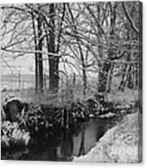 Snow Creek Woods Canvas Print