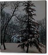Snow Day Hued Canvas Print