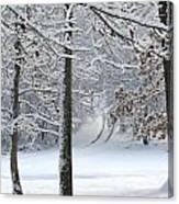 Snow Day Iv Canvas Print