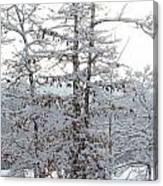 Snow Day V Canvas Print