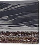 Snow Dunes By Night Canvas Print