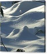 Snow Dunes Canvas Print