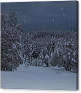 Snow Falling In A Forest Canvas Print