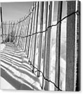 Snow Fence B/w Canvas Print