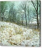 Snow Fence Beach Dune Canvas Print