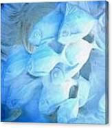 Snow Fishies Canvas Print