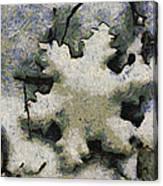 Snow Flake 04 Photo Art Canvas Print