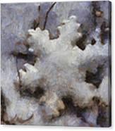 Snow Flake Enjoy The Beauty Photo Art Canvas Print