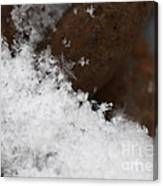 Snow Flake Canvas Print