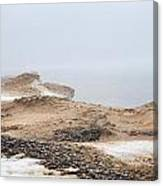 Snow Fog At Whitefish Point Canvas Print