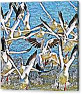 Snow Geese Panic Canvas Print
