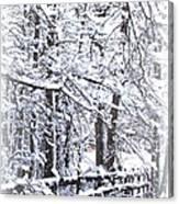 Snow-img-2174-merry Christmas Canvas Print