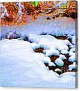 Snow In Color Canvas Print
