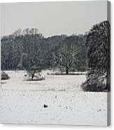 Snow In Lincolnshire Canvas Print