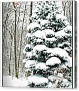 Snow In Ohio Canvas Print