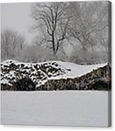 Snow In Plymouth Meeting Pa Canvas Print