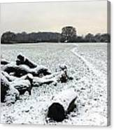 Snow In Surrey England Canvas Print