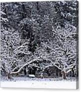 Snow In The Valley Canvas Print