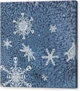Snow Jewels Canvas Print