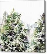 Snow Laden - Digital Effect IIi Canvas Print