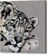 Snow Leopard Digital Art Canvas Print