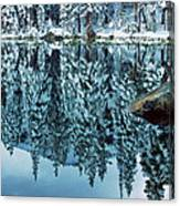 Snow Mirror Canvas Print