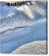 Snow Mound Canvas Print