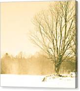 Snow Of Old Canvas Print