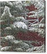 Snow On A Pine Tree With A Red Barn. Canvas Print