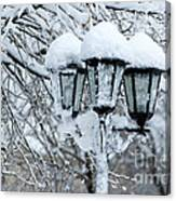 Snow On Lamps Canvas Print