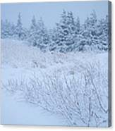 Snow On New Years Eve Canvas Print